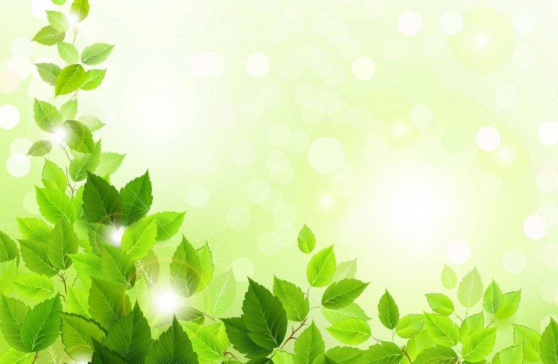 «Экологически чистое творчество» приглашает участников!