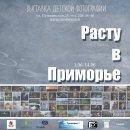 Фотовыставка «Расту в Приморье» откроется 1 июня