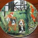 Приглашаем на выставку посвященную году собаки